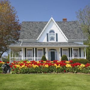 A traditional house with large flower beds full of tulips.